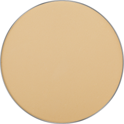 Пудра Freedom System Mattifying System 3S Pressed Powder Round 302 icon