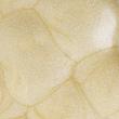 thumbnail Розсвітлюючий тональний крем для обличчя і тіла AMC 62