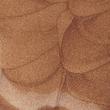 thumbnail Розсвітлюючий тональний крем для обличчя і тіла AMC 65